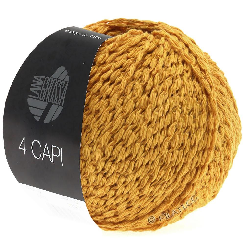 4 CAPI  von Lana Grossa