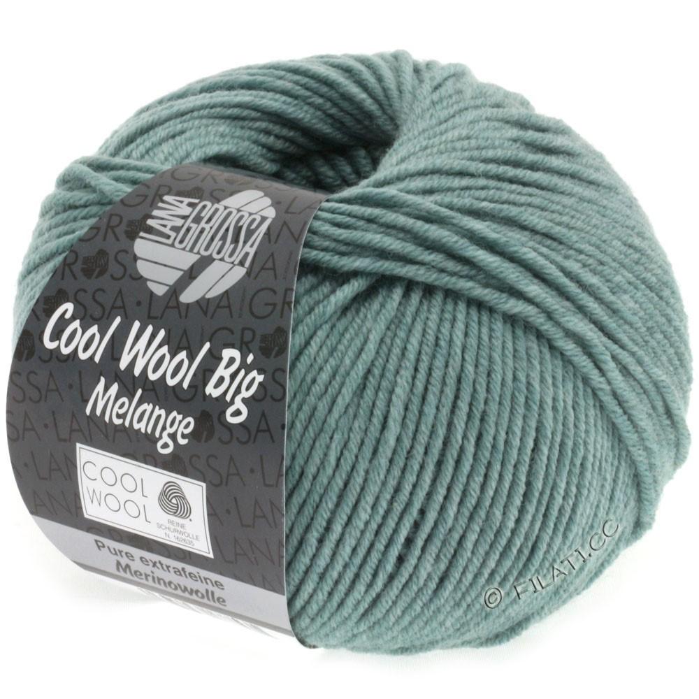 COOL WOOL Big Uni/Melange/Print - von Lana Grossa | 0332-Graugrün meliert